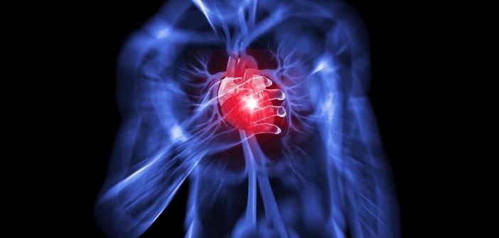 ઊંચા તાપમાને રંધાયેલો ખોરાક હૃદયરોગનું જોખમ વધારે….